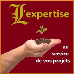 logo expertise crédit assurance